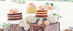 9 Best Summer Wedding Cake Images In 2019