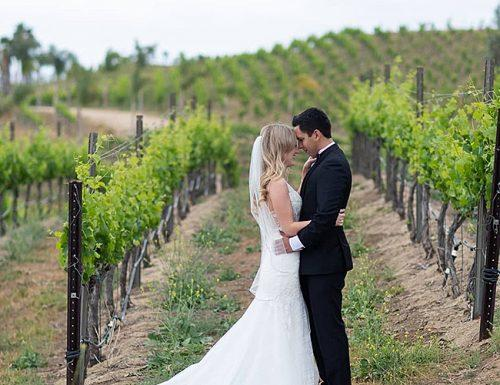 how to plan an outdoor wedding winery ceremony