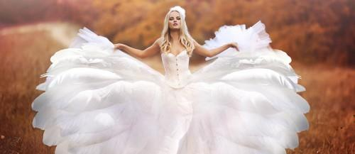 24 Beautiful Feather Wedding Dresses