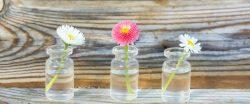 33 Gorgeous Mason Jars Wedding Centerpieces