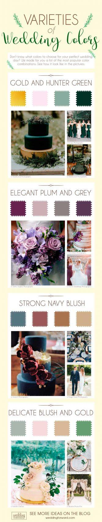 varieties of wedding colors wedding theme infographics