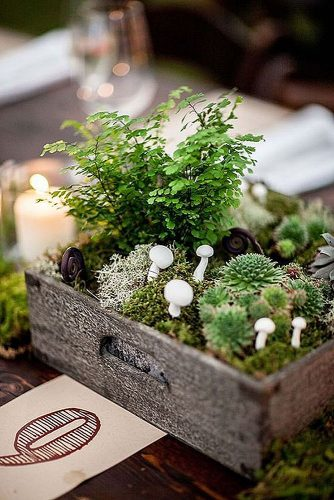 non floral wedding centerpieces in a wooden box moss green and white mushrooms matties studio