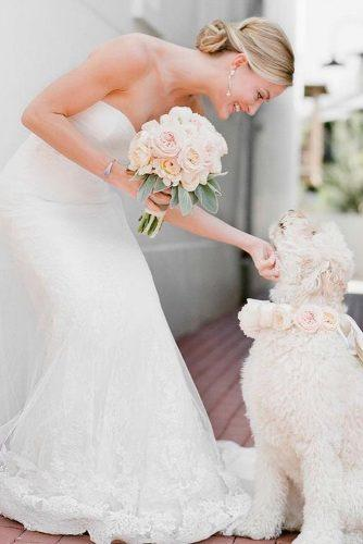 wedding pets bride with dog tuwebdeboda