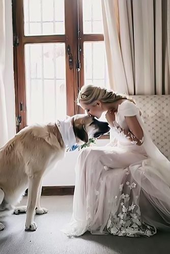 wedding pets bride with white dog festaminh
