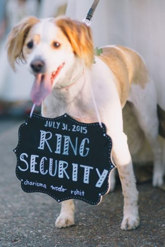 wedding pets dog ring security black and hue photography