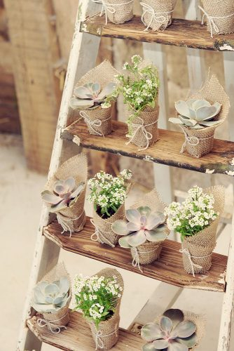 rustic backyard wedding decoration wooden ladder with succulents in burlap rebecca douglas photography