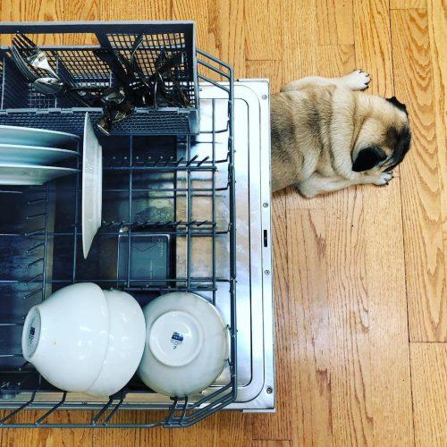 wedding registry ideas dishwasher