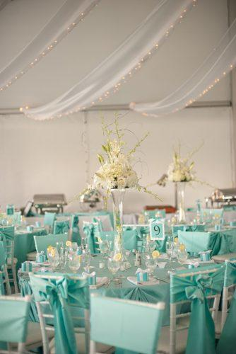 tiffany blue wedding decorations reception under tent with tall white centerpiece meaghan elliott photography