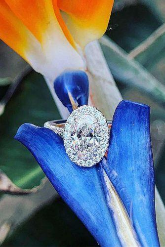 engagement ring inspiration oval cut halo diamond pave band