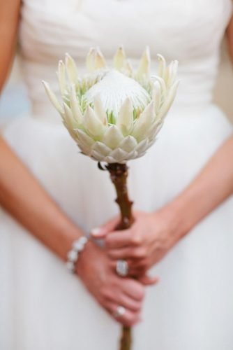 single stem wedding bouquets white protea Lisa Hessel Photography