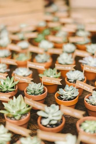 wedding ideas for summer succulent wedding favors