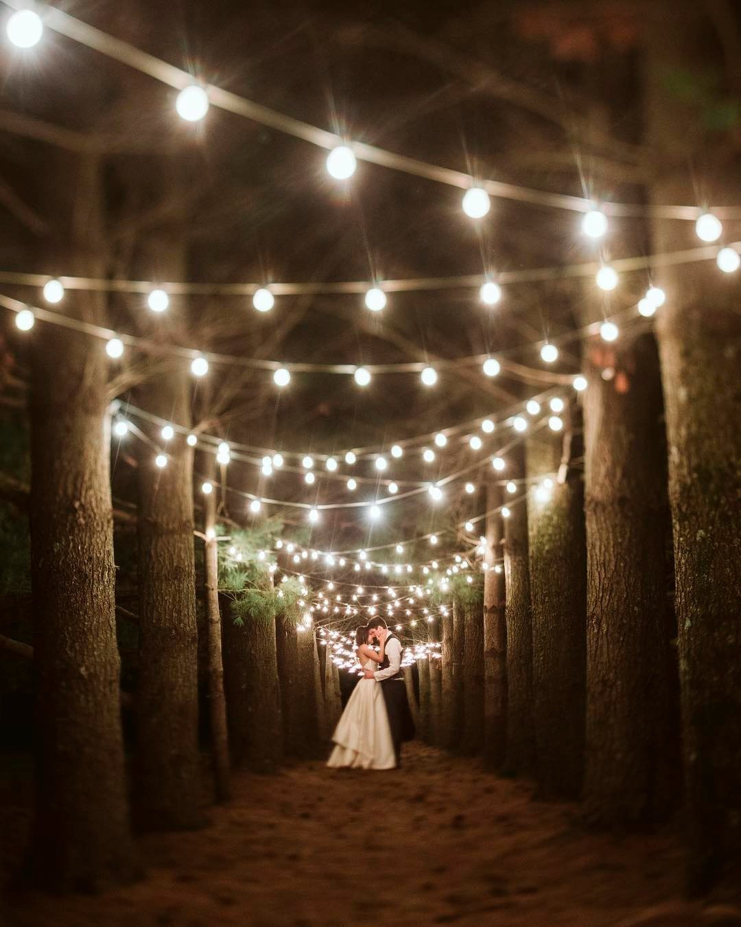 wedding trends string lights wood
