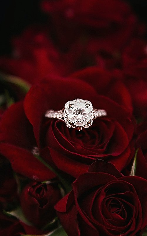 round engagement rings white gold diamond main