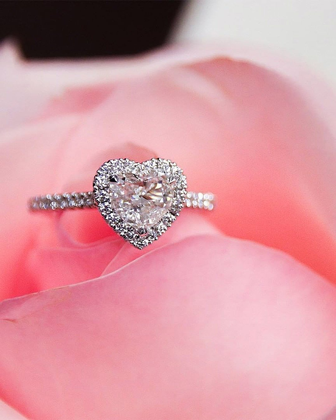 halo engagement rings heart shaped diamond halo
